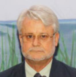 Dr. Thierry Lefevre (AEMI Advisor)